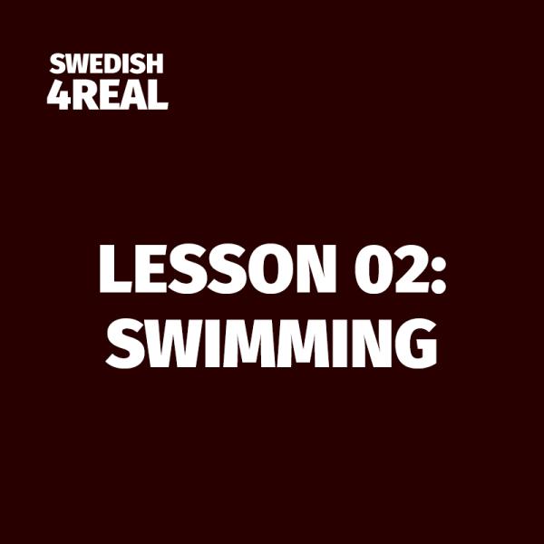 learn swedish lesson 02