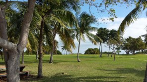 Boca Chita Key. The only sound you hear is the rustling of the palm fronds in the breeze.