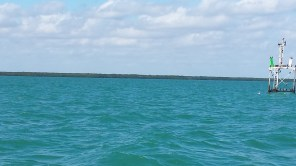 Watching ATONs closely in Biscayne Bay.