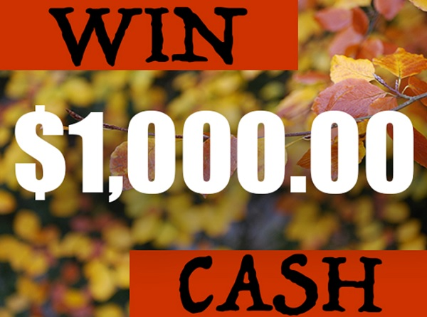 Love's Customer Survey Sweepstakes: Win $1000 Cash!