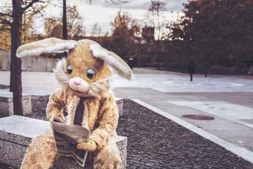 Un gros lapin lit la lettre de Sweet Home