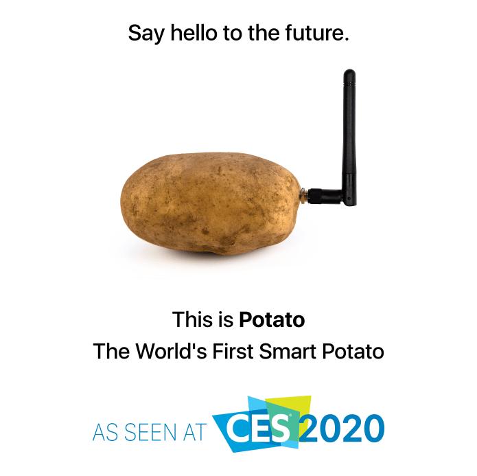 La pomme de terre connectée, star du CES 2020.