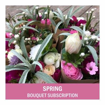 Spring-FlowerCSA-txt2
