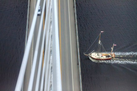 To Do in Mid-Coast Maine: Penobscot Narrows Bridge Observatory - Sweet and Savoring