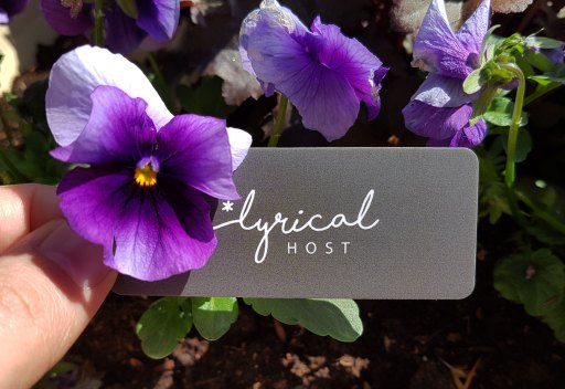 host your site with lyrical host