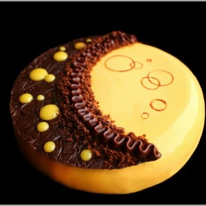Pumpkin Honey Mousse, Cranberry Crémeux , Puffed Rice Chocolate Caramel Crunch and Chocolate Brownie Cake ~ Metamorphosis Entremet