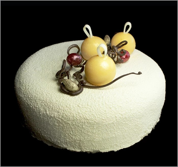 Almond Joconde with Cranberry Gellee on Coconut Dacquoise ~ White Christmas Entremet