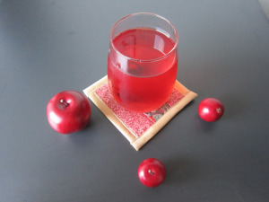 Cranberry-Apple-Citrus Cocktail