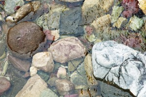Rocks, Underwater, Running Eagle