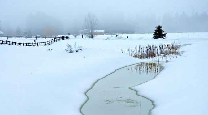 Scenes from Winter – A Gallery of Photos