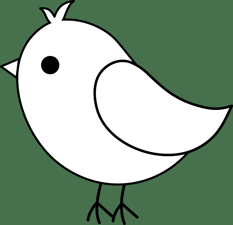 Cute Bird Line Art