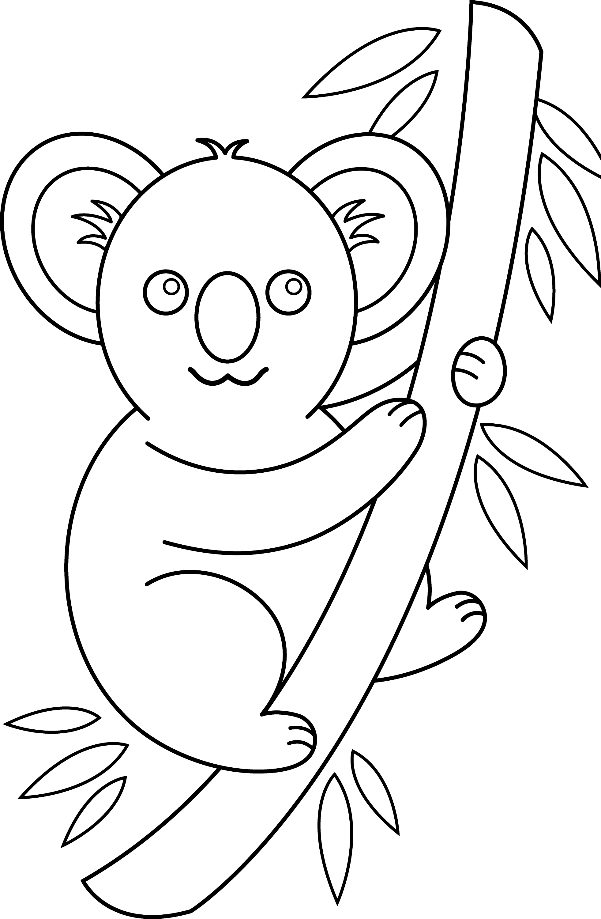 cute baby koala coloring pages download image big nose pc android