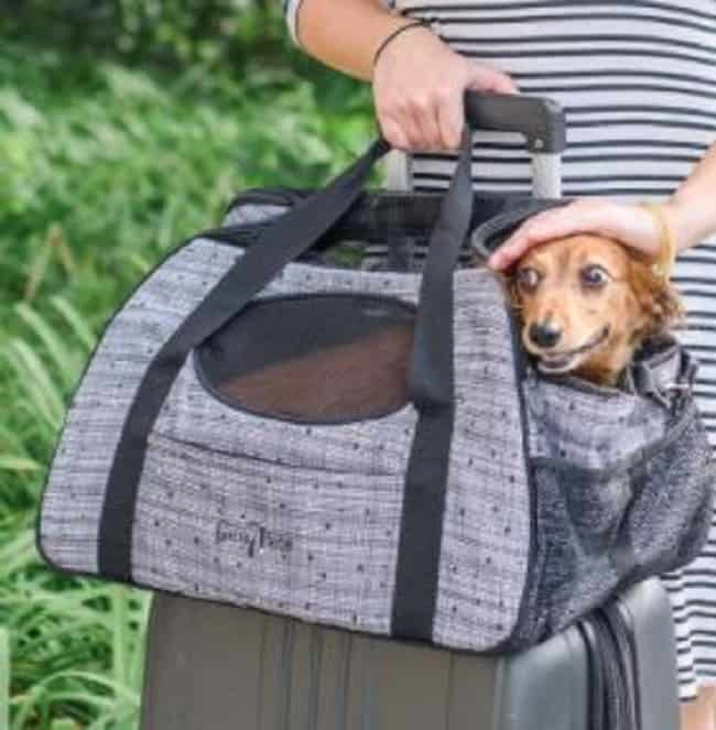 extra small bag carrier