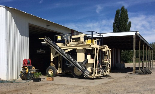 Reed Vineyard grape harvesting machine.