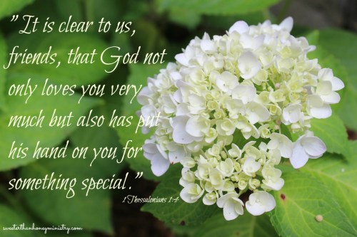 hydrangea 1 thessalonians 1-4