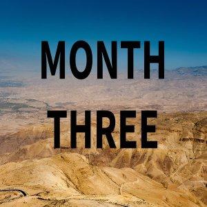 MONTH 3