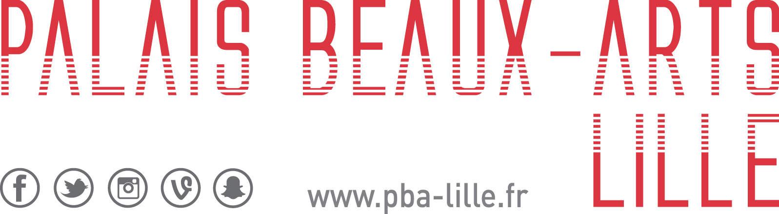 Read more about the article Le Palais des Beaux-Arts de Lille et le Sweet Flamingo