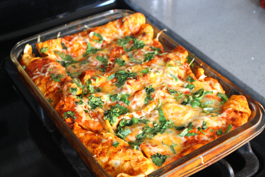 Cheesy Chicken Enchiladas Mexican Dish