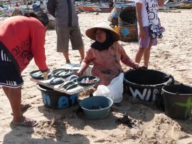 Vendeuse de poissons
