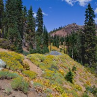 Lassen National Park - Camping