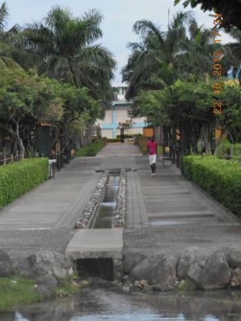 Turtle River Park Walkway