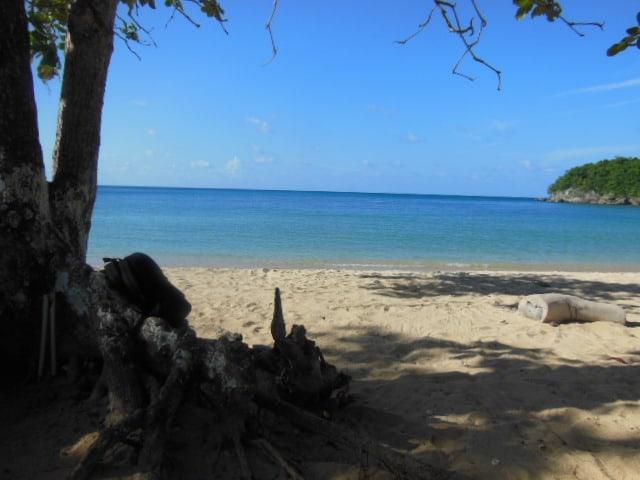 Sweet Jamaica interview on ExpatBlog.com