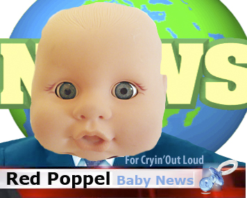 Red Poppel - News Anchor