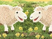 Winnie and Wanda The Wooly Sheep