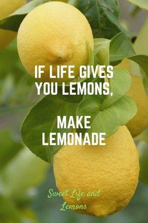 Life and lemons phrase