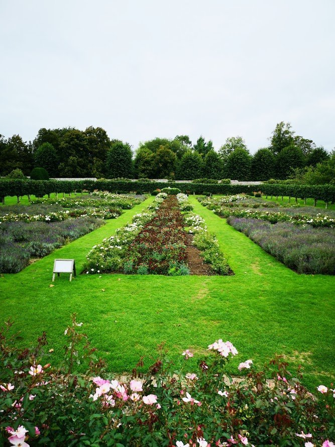 Union flag garden