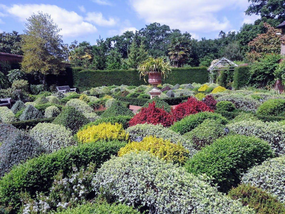 trial garden wisley