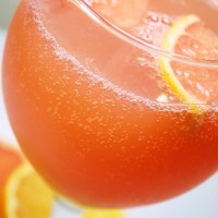 Sparkling Citrus Punch
