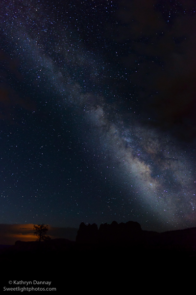 Distant storm silhouettes tree while Milky Way arches over Bryce Canyon