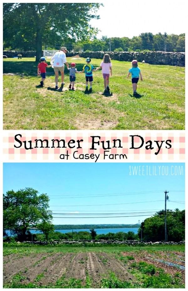 Summer Fun Days - Farm Camp - Casey Farm