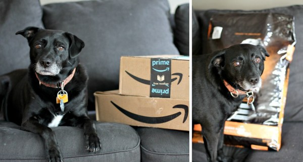 Dog Food Delivery from Amazon