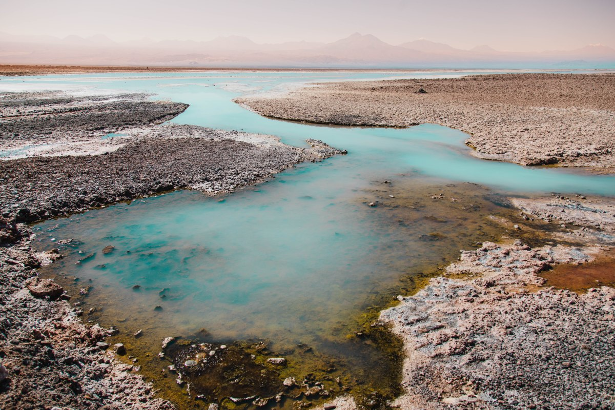 Laguna Chaxa in the Atacama Desert in Chile