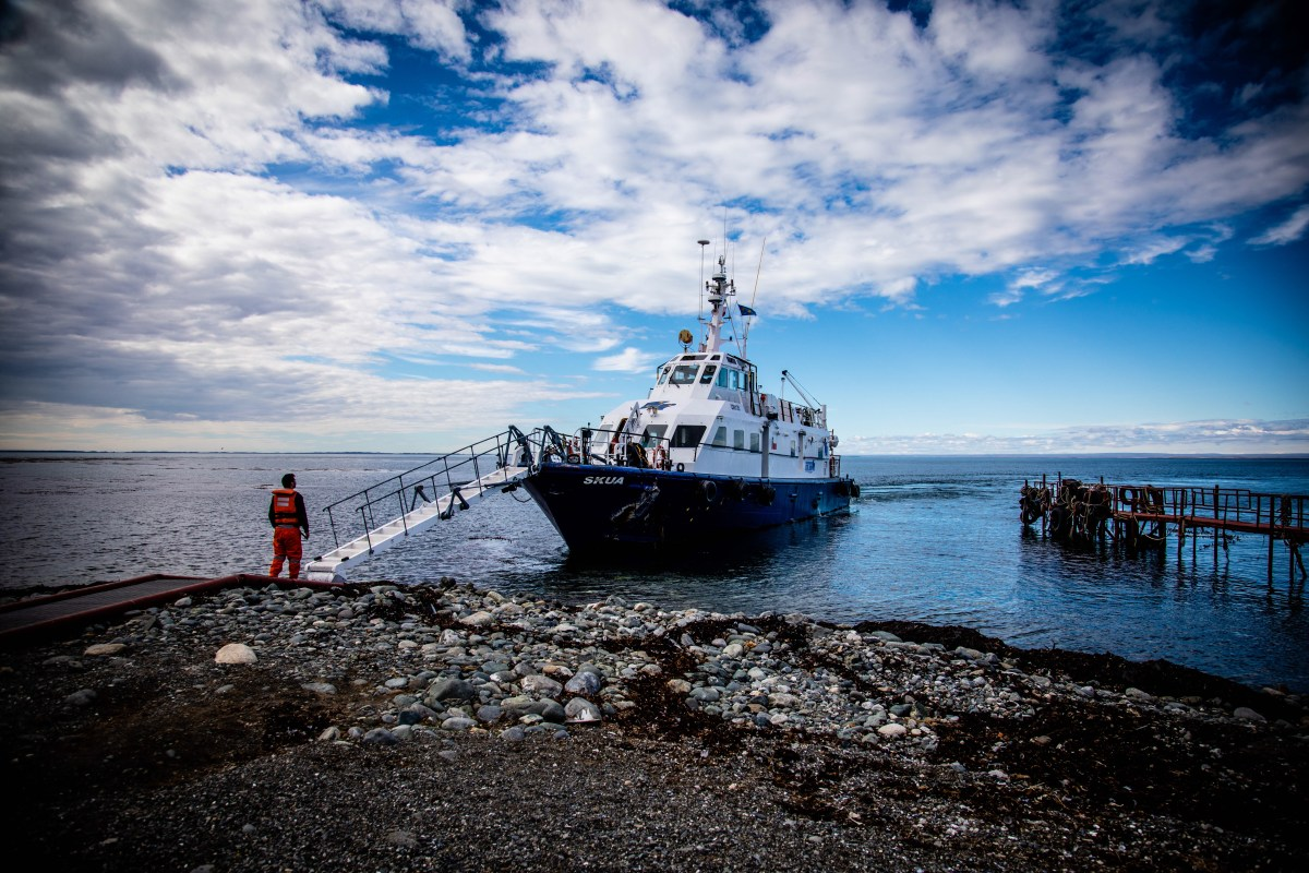 The ferry that gets you from Punta Arenas to Magdalena Island to see the Penguins