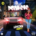 "Music:-Danny S – ""Ponkele"" ft. Leycorn"
