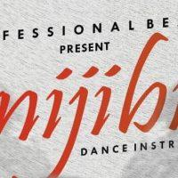 Free Beat : Professional - Onijibiti Beat