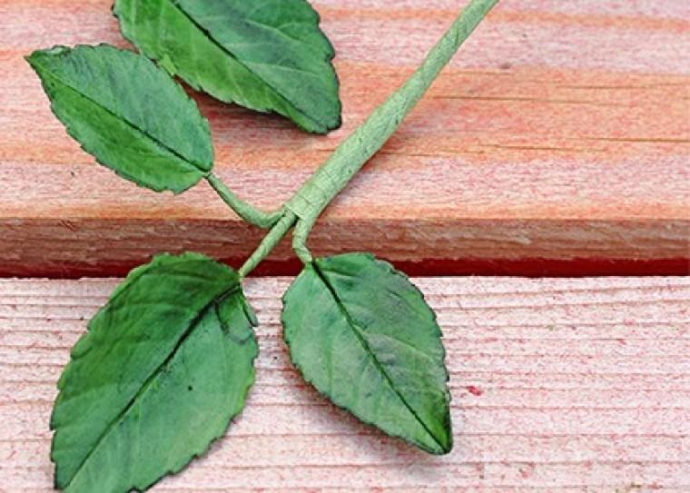 feuille de rose en pâte à sucre