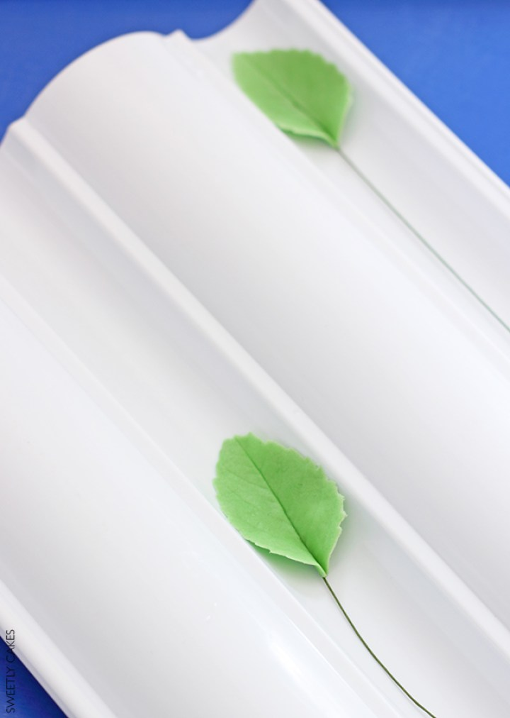 séchage des feuilles