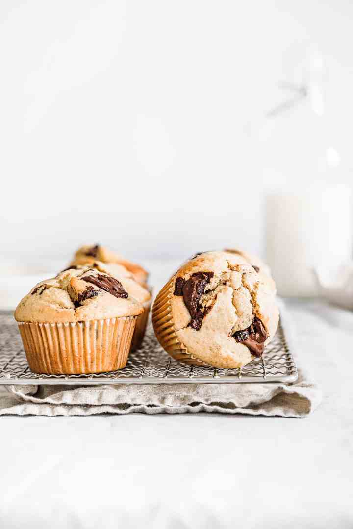 Chewy chocolate chip muffins recipe