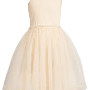 princess-tutu-dress-size-4-6
