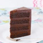 Gluten Free Mud Cake ~ Sweetness & Bite