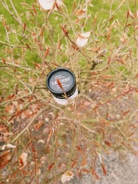 Review|The Lekker Company|natural deodorant sensitive soft bamboo
