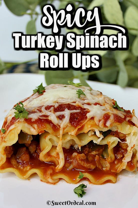 Spicy Turkey Spinach Roll Ups