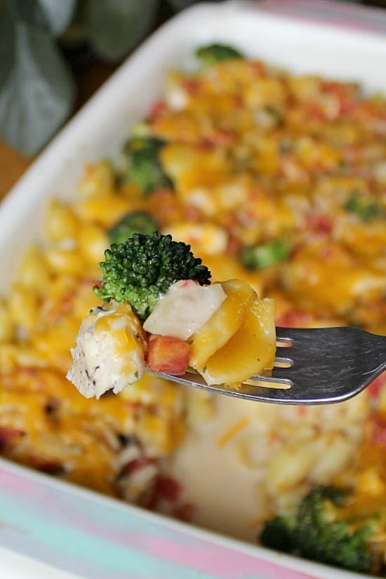 A bite of broccoli, chicken and cheesy pasta.