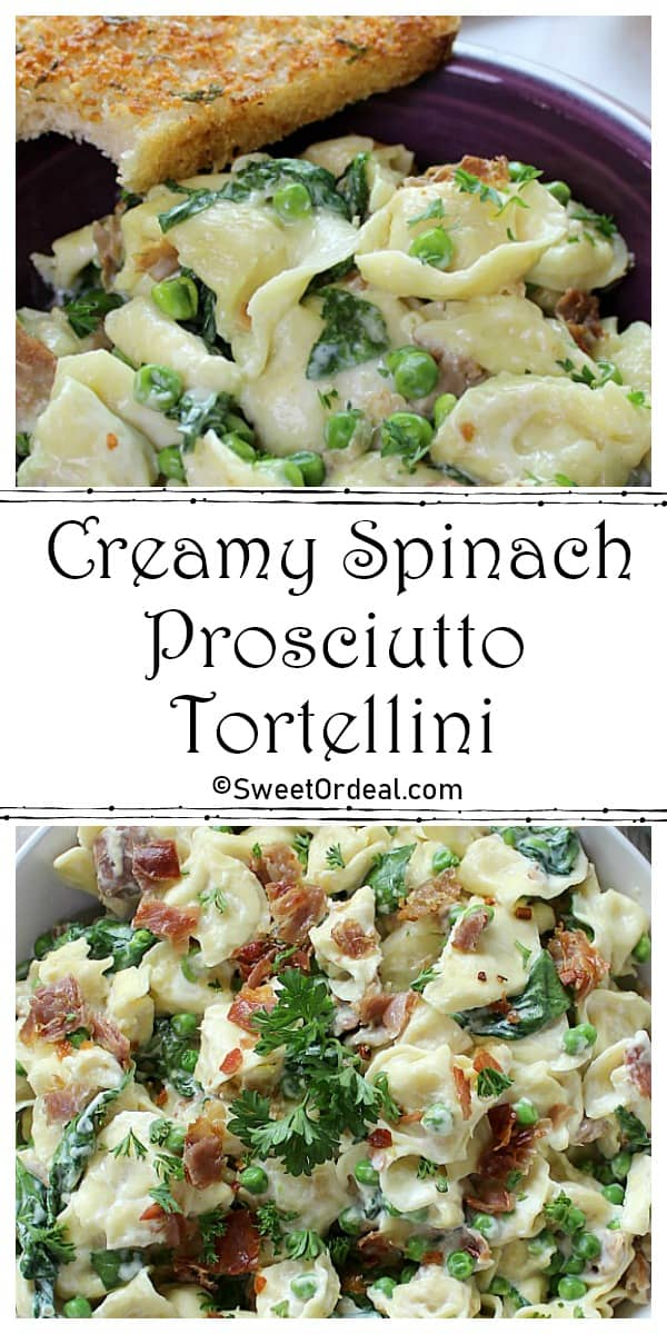 Two pictures of creamy cheese sauce smothered pasta.