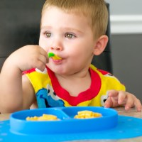 Toddler Meal Time Made Easy