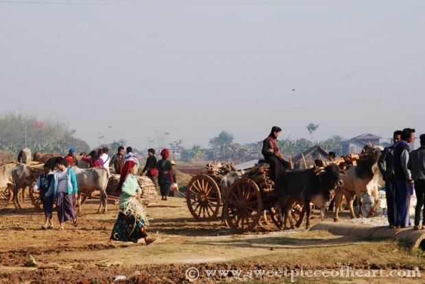 lac-inle-birmanie